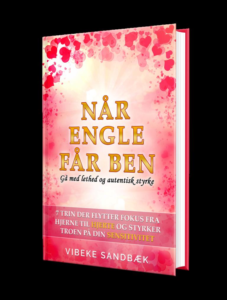 """Køb bogen """"Når engle får ben"""""""
